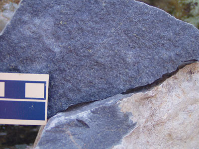 Example of tuff with white-colored weathering rind from the Eno River area